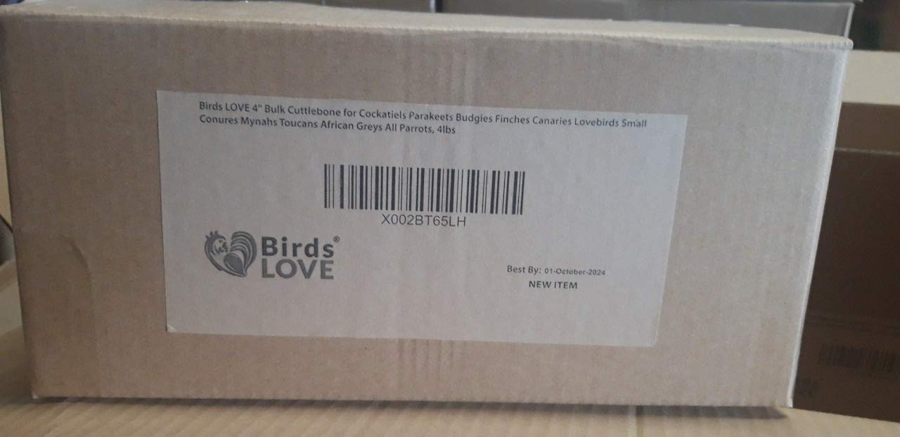 Birds LOVE Cuttlebone for Cockatiels Parakeets Budgies Finches Canaries Lovebirds Small Conures Mynahs Toucans African Greys All Parrots
