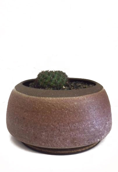LILY KING POT LAVENDER SERIES PLANTER