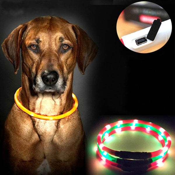 Dog Luminous Collar Led Lights Adjustable USB