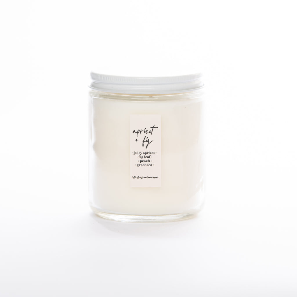 IT'S NOT DRINKING ALONE IF THE PLANTS ARE HOME • non-toxic soy candle