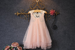 Kimora Baby Girl Pink Lace Dress - Gaia Spot