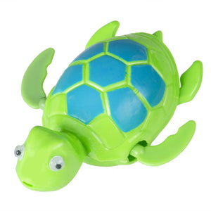 Playful Pete The Turtle