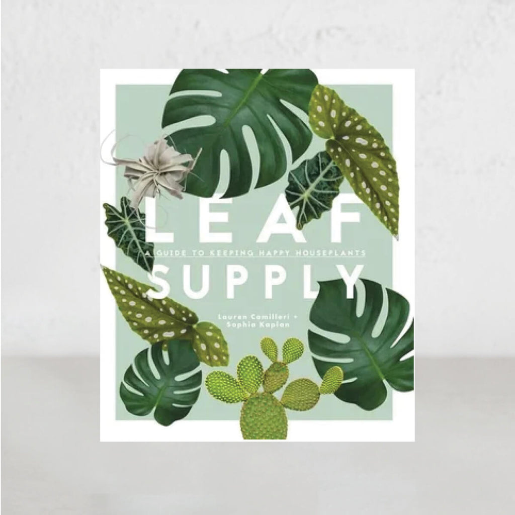 LEAF SUPPLY  |  A GUIDE TO KEEPING HAPPY HOUSE PLANTS  |  Lauren Camilleri + Sophia Kaplan