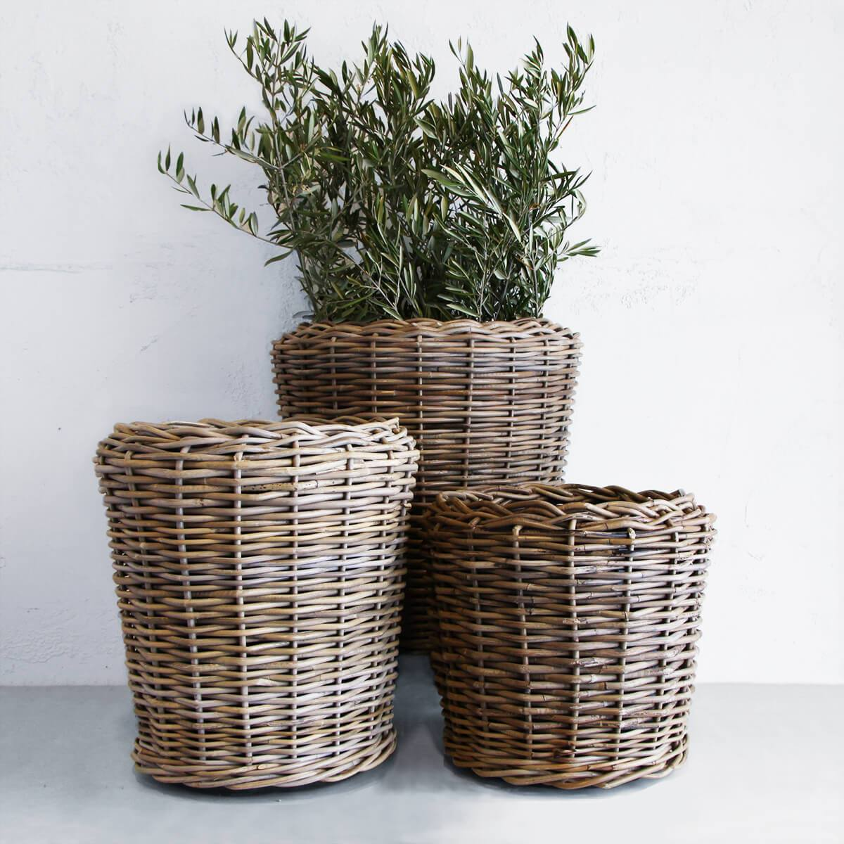 RATTAN POT WITH TUB  |  DRY POT   |  SET OF 3