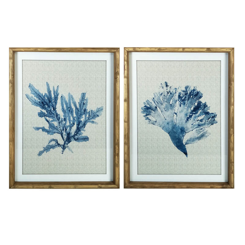 REEF CORAL PRINT FRAMED ARTWORK  |  SET OF 2