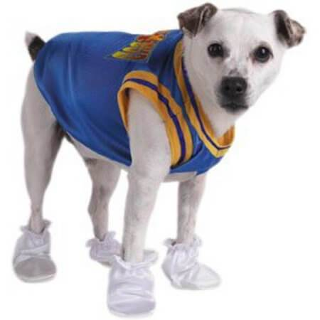 sc 1 st  Jersey Ch&s & Air Bud Timberwolves Dog Jersey Costume K9 - Jersey Champs