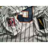 Roy Hobbs The Natural New York Knights Fully Stitched Baseball Jersey Stripes