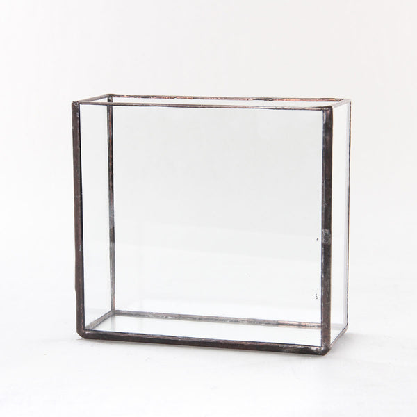 Kit #4 - Glass Brass Box Terrarium -  - 7