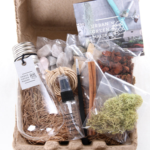 Kit #7 - Glass Bulb/Squirrel Terrarium - URBAN GREEN MAKERS