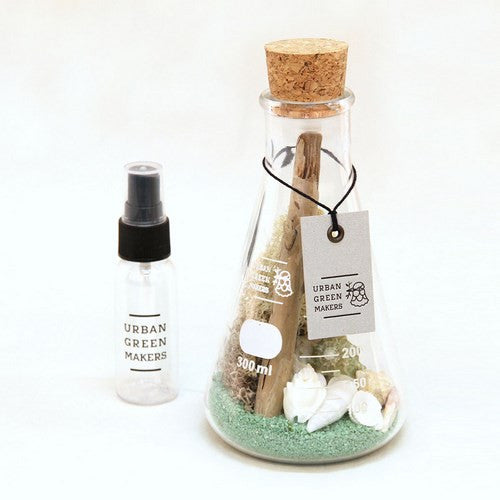 Kit #9 - Glass Flask Terrarium - URBAN GREEN MAKERS