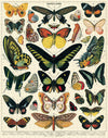Cavallini | 1000 PC Puzzles | Butterfly