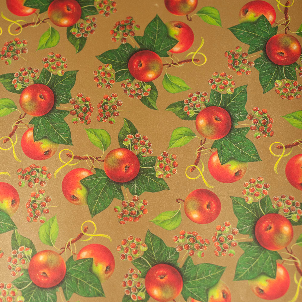 RoCRT072: Rossi Apples and Ivy Paper
