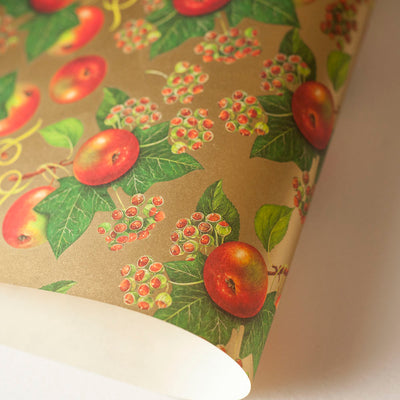 RoCRT072: Rossi Apples and Ivy Paper - Kami Paper