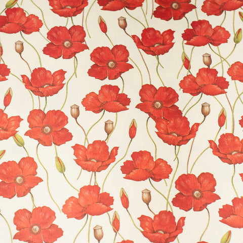 RoCRT583: Rossi Poppies Paper