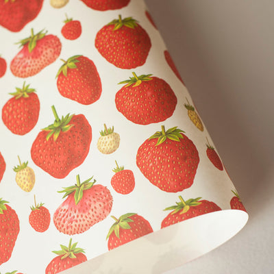 RoFRT009: Rossi Strawberries Paper - Kami Paper