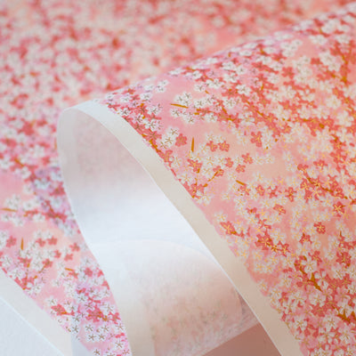 CH306: Apricot Pink Cherry Blossoms - Kami Paper