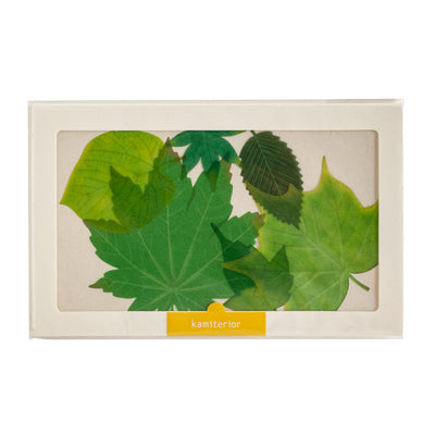 Kamiterior: Green Leaf Sticker - Kami Paper