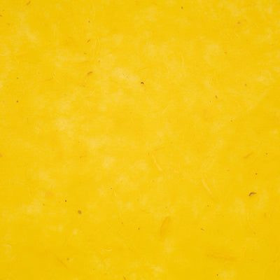 CoUnYe: Coated Unryu - (Yellow)