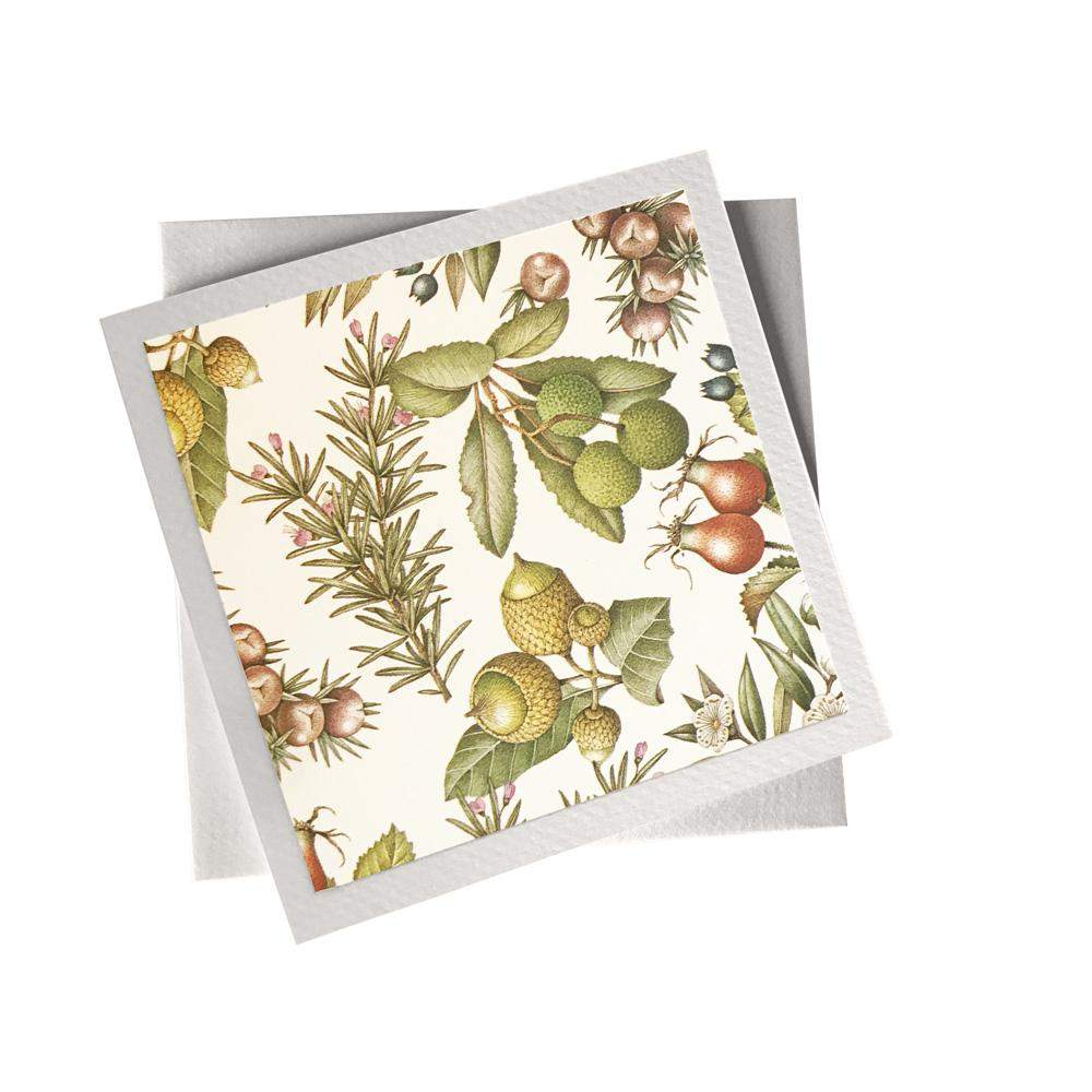 Ivory Card (155mm x 155mm) Olives, Card, Kami - Kami