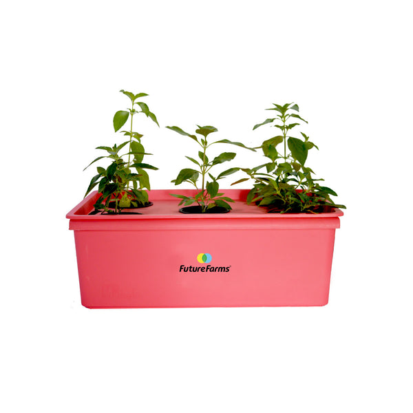 Darwin Penta Hydroponic Grower's Kit (5 planter)