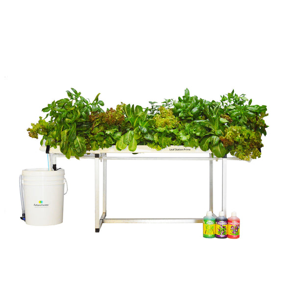 Leaf Station Prime Hydroponic Grower's Kit (28 planter NFT)