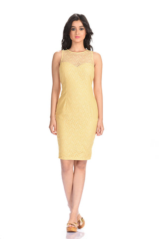 Aaina by Sanchari-Chantilly Lace Pencil Dress