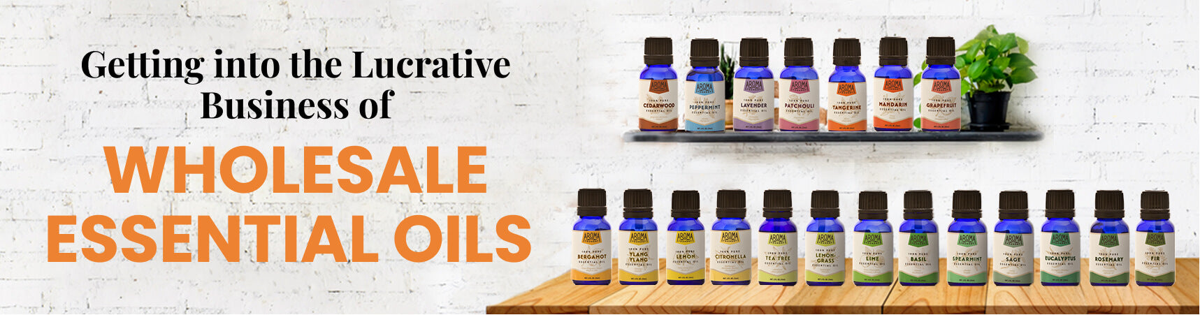 Getting into the Lucrative Business of Wholesale Essential Oils