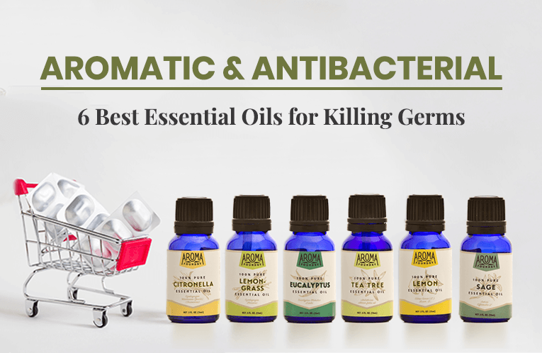 Aromatic & Antibacterial: 6 Best Essential Oils for Killing Germs