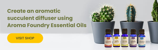 Shop Essential Oils for Succulent Diffuser | Aroma Foundry