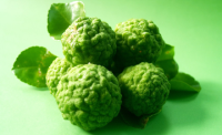 Bergamot Essential Oil Is Produced from the Fruits' Peels