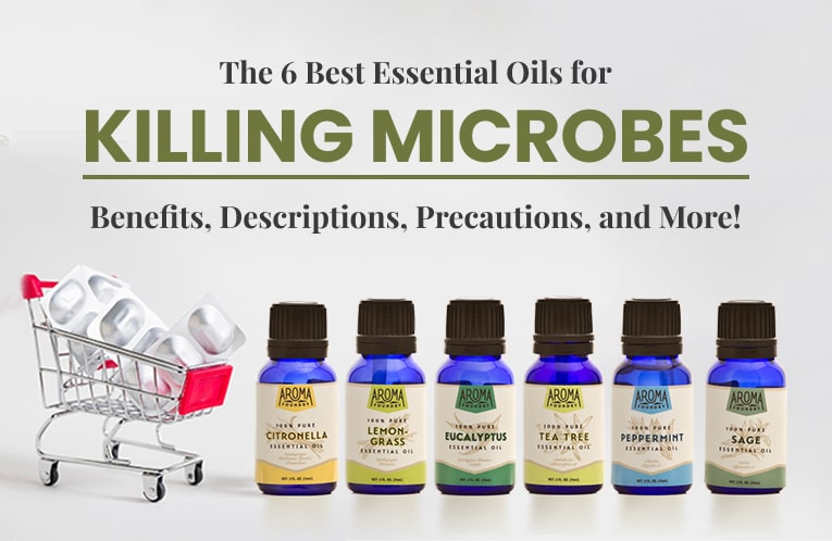 The 6 Best Antimicrobial Essential Oils: Benefits, Descriptions, Precautions, and More