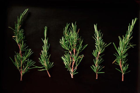 five rosemary leaves
