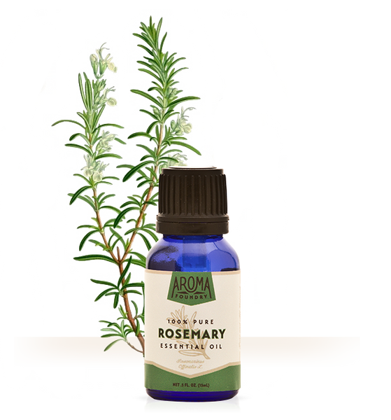 Rosemary Essential Oil | Aroma Foundry