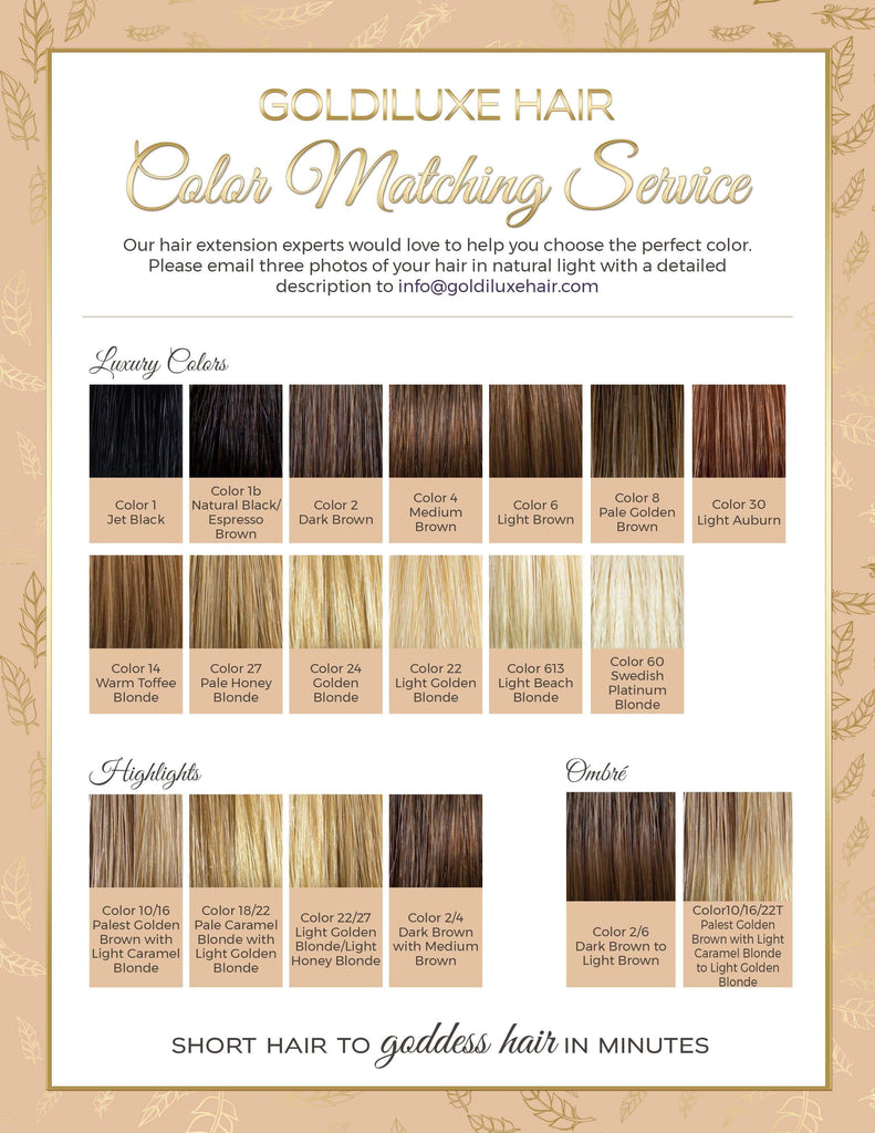 New18 150g premium quality clip in human hair extensions color chart 20180g nvjuhfo Images
