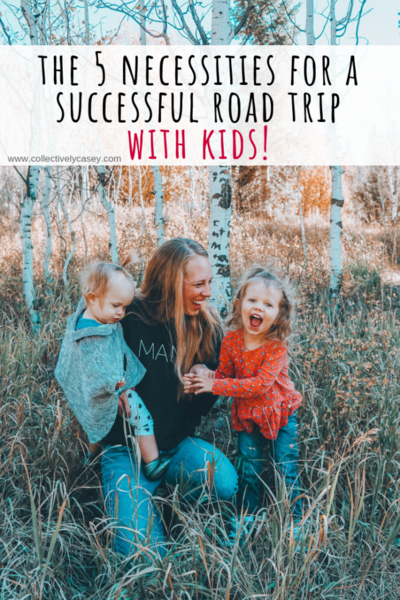 The 5 Necessities for a Successful Road Trip with Kids!