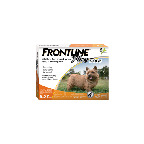 Frontline Plus for Dogs up to 22 lb.s