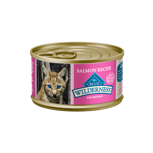 Blue Buffalo Wilderness Grain Free Salmon Can Kitten Food