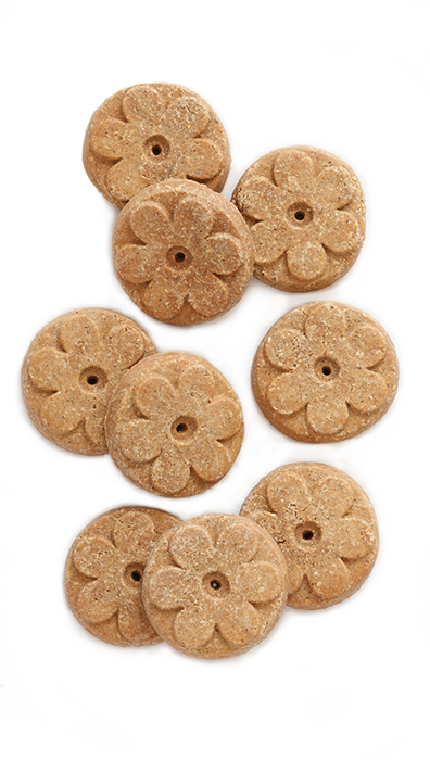 Earthborn Holistic® Lamb Meal Recipe Biscuits