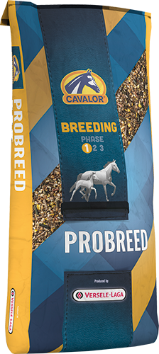 CAVALOR Breeding Probreed