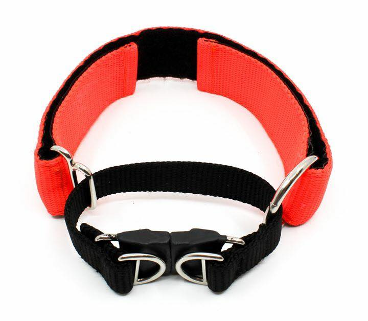 Bazooka Collar Breakaway Martingale Large
