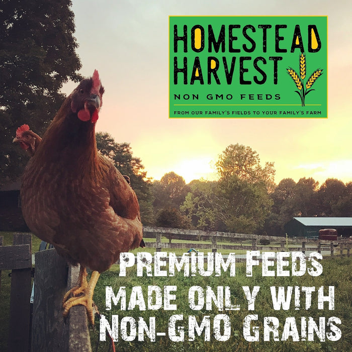 Homestead Harvest Non-GMO Whole Grain Layer Blend 16% For laying hens or ducks