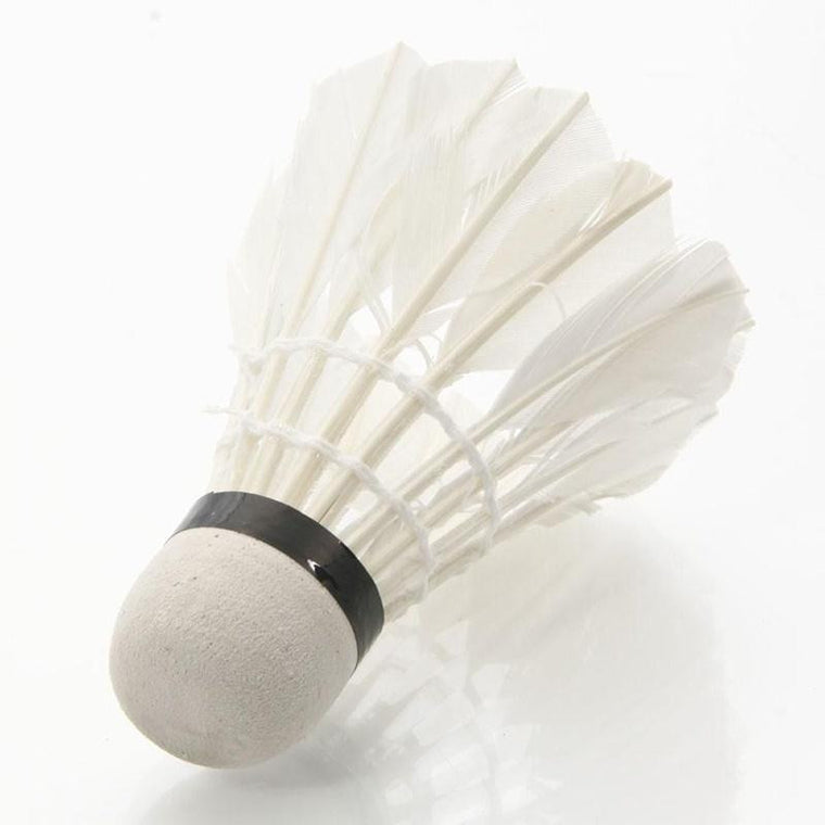 4Pcs Plastic Professional Badminton Balls Portable White Goose Feather Training Badminton Ball Shuttlecocks Sports Accessories