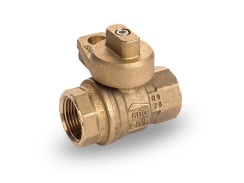 S80 Series Valve with Tamper Proof Lockwing