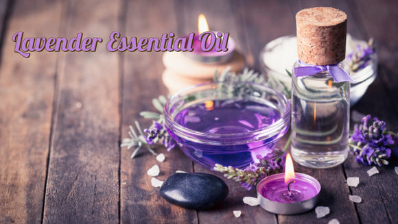 Zongle Therapeutics - Lavender Essential Oil