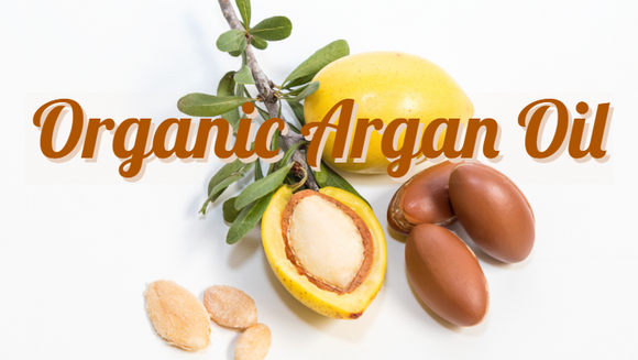 Zongle Therapeutics Organic Argan Oil