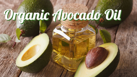 Zongle Therapeutics Organic Avocado Oil