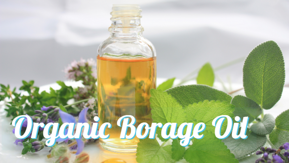 Zongle Therapeutics Organic Borage Oil