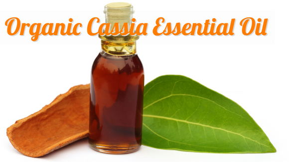 Organic Cassia Essential Oil