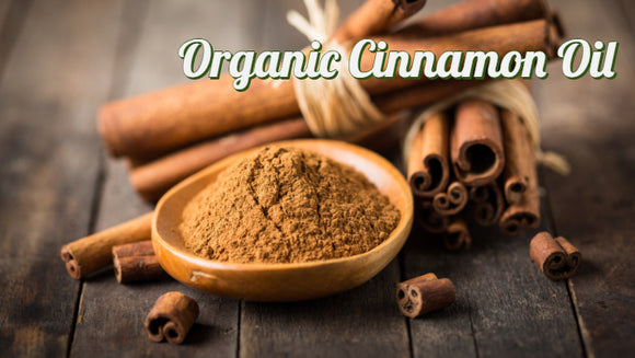 Zongle Therapeutics Organic Cinnamon Essential Oil