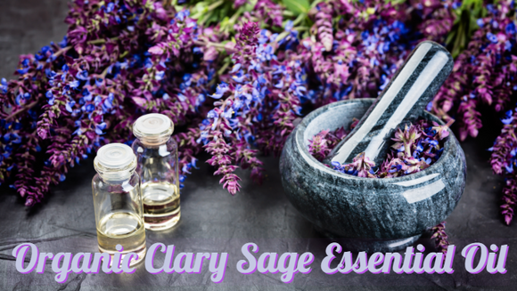 Zongle Therapeutics Organic Clary Sage Essential Oil